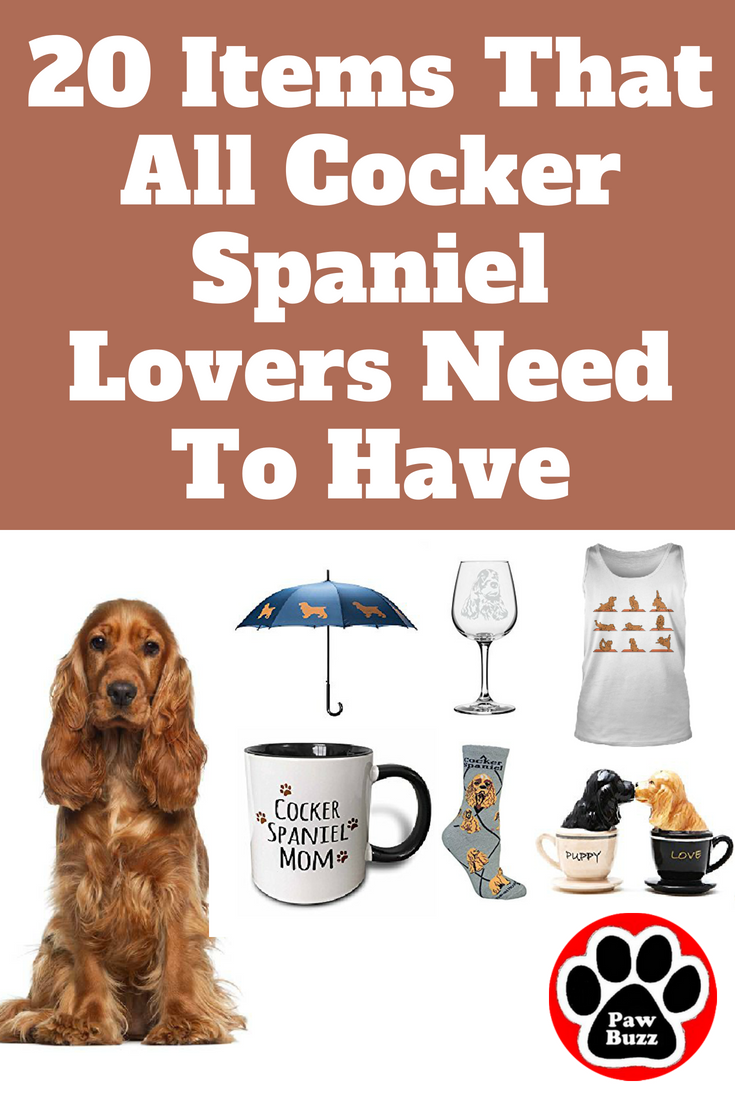 20 Items That All Cocker Spaniel Lovers Need To Have Cocker