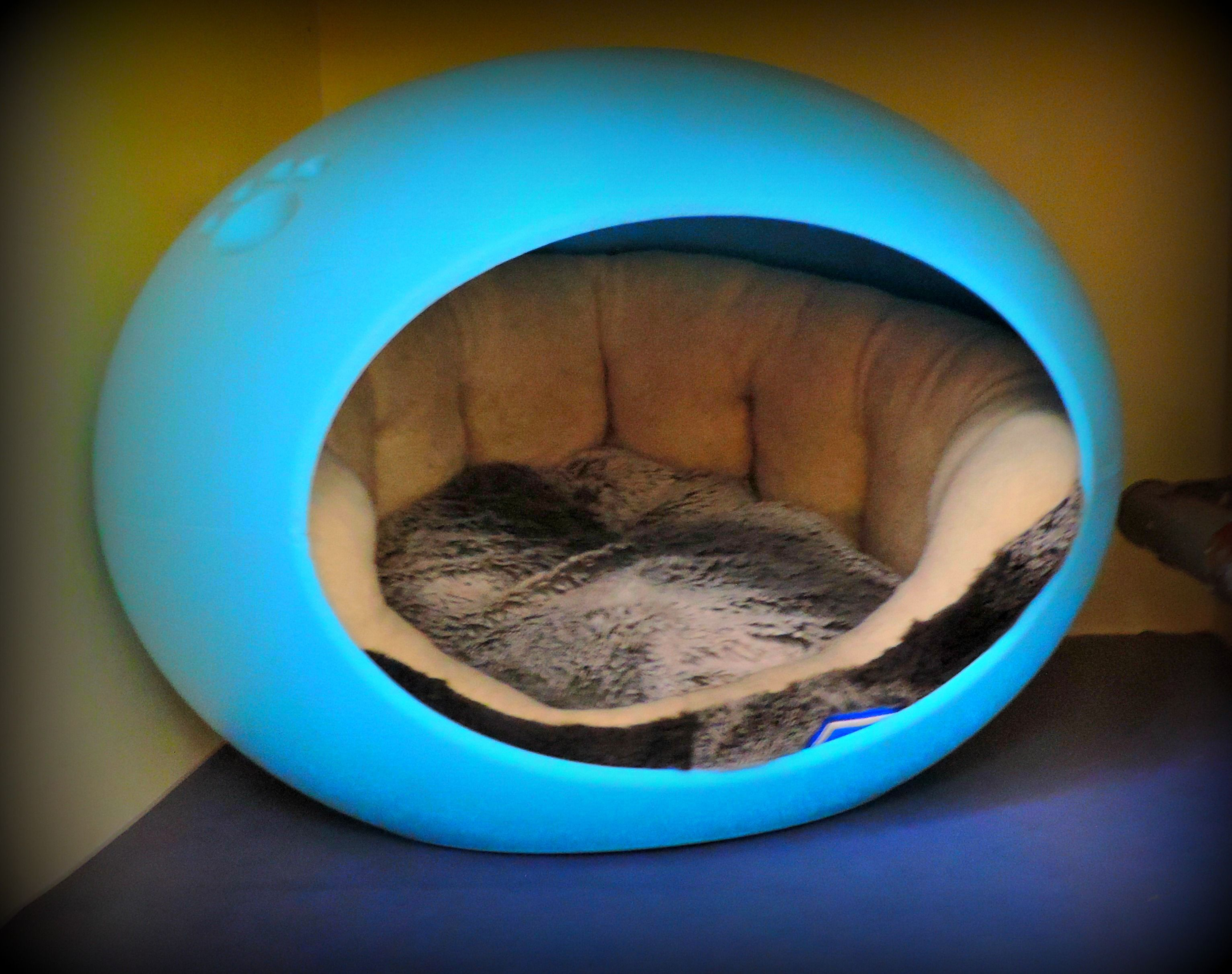 Cosy Cat Pods Cat Pod Cattery Inverness