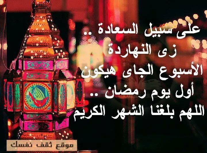 شبكة مصر كل سنه وانتم طيبين عالم فتكات Light
