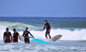 Surfing Or Standup Paddleboarding Lesson At Clint Carroll Surf School Up To 81 Off Five Options Available Sup Surf Surfing Paddle Boarding
