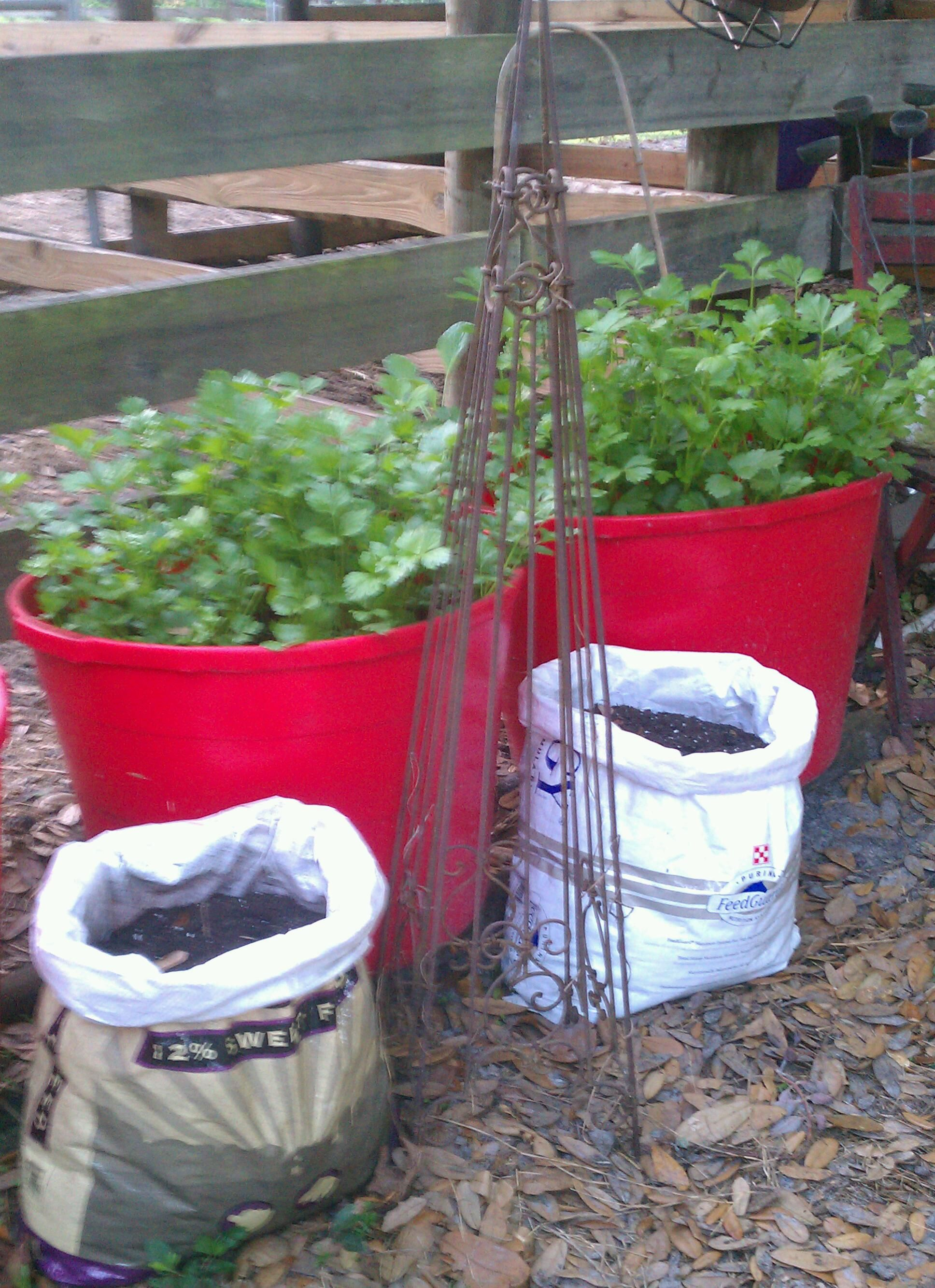 Questions about the recycled plastic raised garden bed 3 x 6 x 11 quot - Recycle Those Woven Plastic Feed Bags To Grow Potatoes
