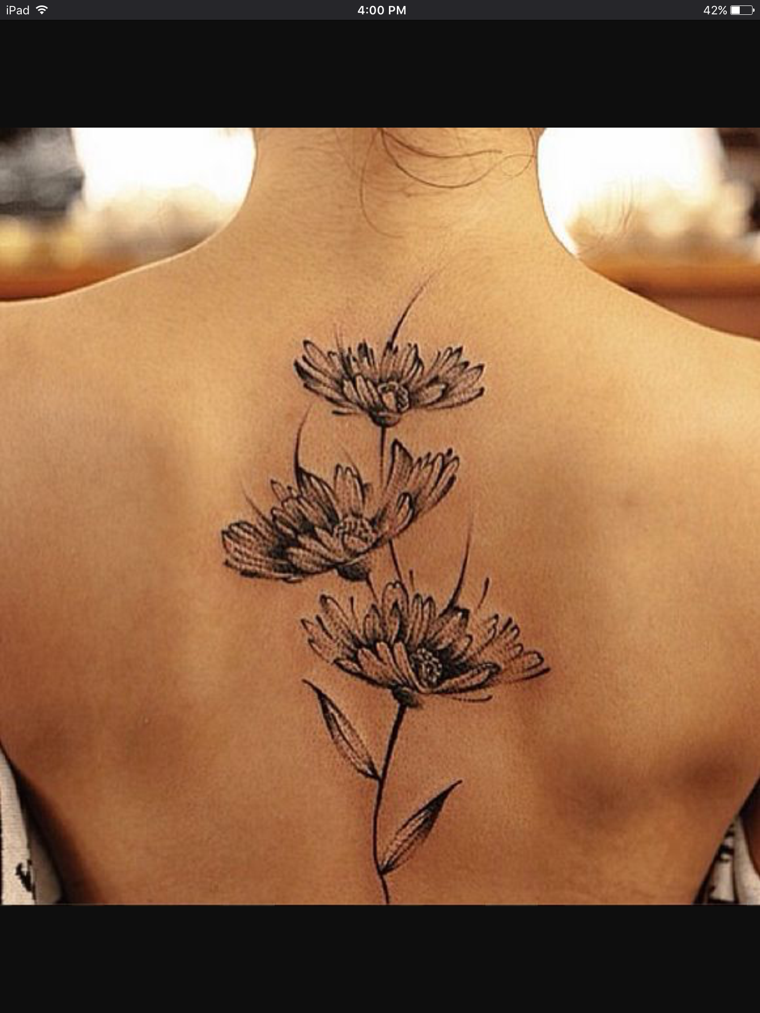 Pin by Kristin Zerfass on Tattoos Spine tattoos, Daisy