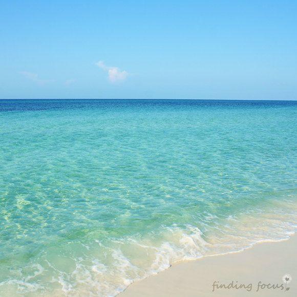 Coastal Decor Beach Photo Tropical Palm Tree and Blue Sky 5x7 Matted Art Print