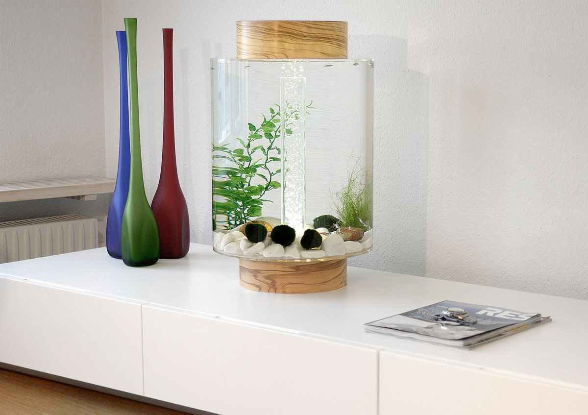 Home Aquarium Gets a Scandinavian Redesign | Aquariums, Interiors ...