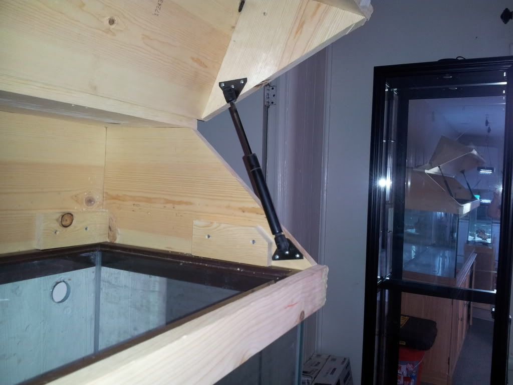 Aquarium fish tank hoods - Diy Canopy Do Most Of You Build The Canopy To Rest On Top Of Tank