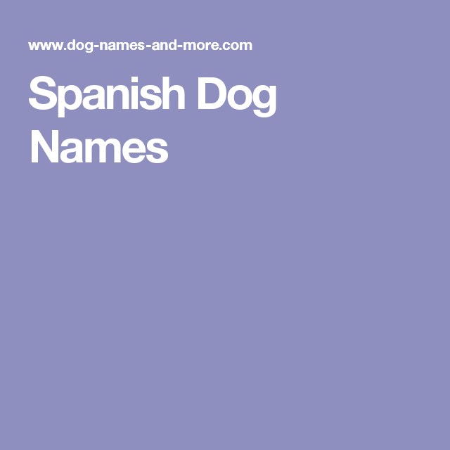 Spanish Dog Names Dog Names Spanish English Spanish