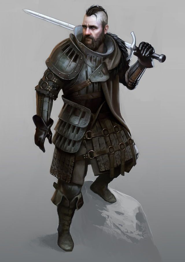 m Fighter med armour sword d&d