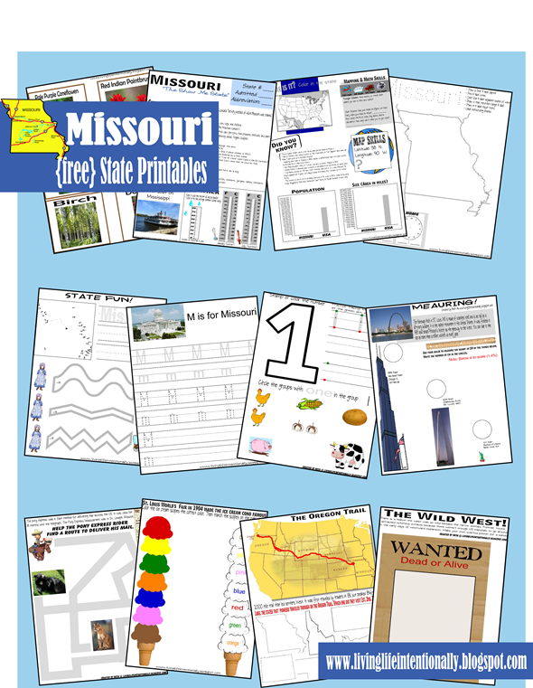 Informational Worksheets Including Map Work Weather Precipitation Animals Vegetation And Lots Of Fun Activities To Remember Fun Facts About Missouri