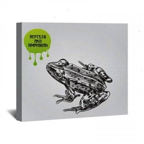 Drawn Sketch Isolated On White Background And Green Blob With Drops Reptiles And Amphibian Sketch Elements Vector Illustration Contemporary Bedroom Decor  138809219  Frog...