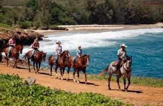 Waterfall Picnic Horseback Ride Kauai