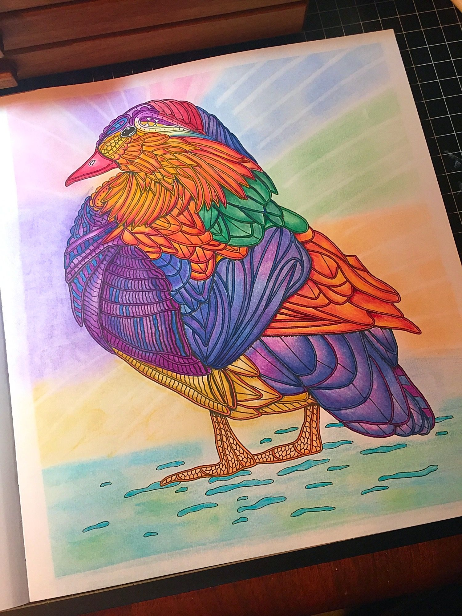 Page From Adult Coloring Book By Georgie Woolridge Called BIRDS A Mindful Photo Share Only No Link To Website