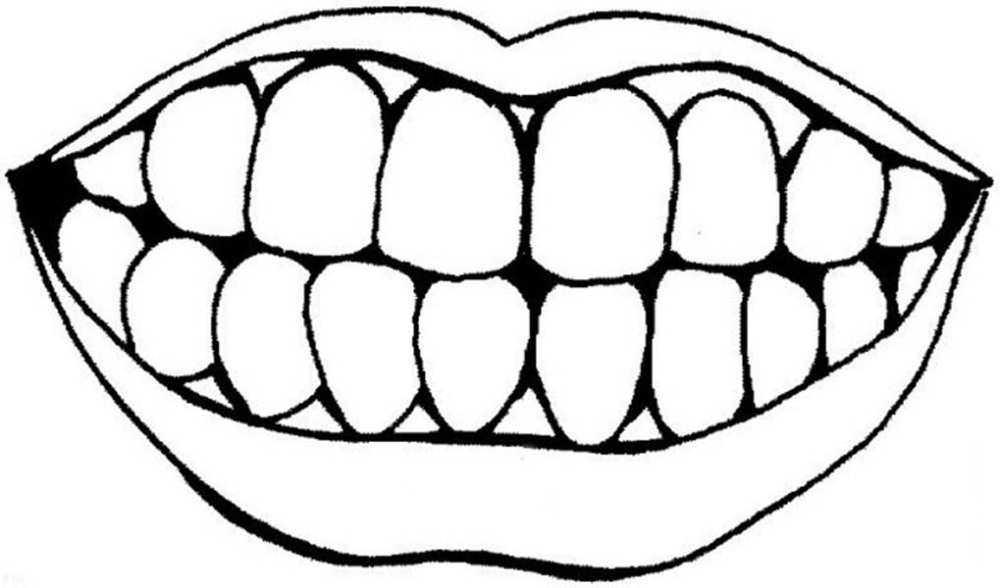 Human Anatomy Teeth And Mouth Coloring Pages Bulk Color Teeth Pictures Dental Kids Dental Health
