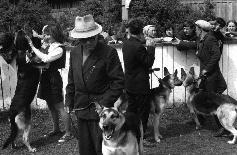 © Henri Cartier-Bresson/Magnum Photos //  Russia. Yaroslavl. 1973. Dog race.