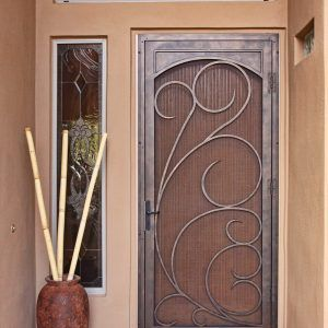 Decorative Storm Doors With Screens | screen doors