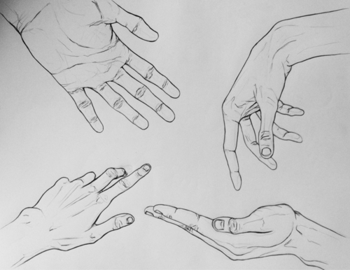 Line Art Hand : Contour line drawings of hands google search
