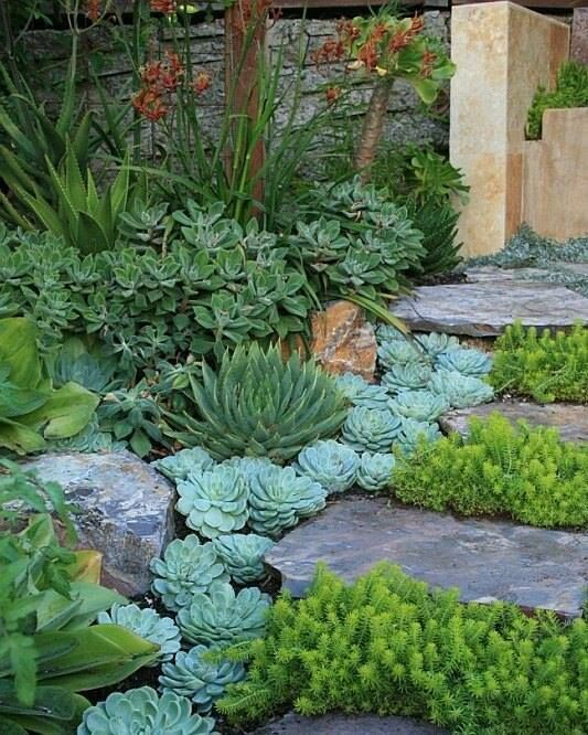 Copyright Of Courtesy David Feix Landscape Design In The East Bay And San Francisco Peninsula