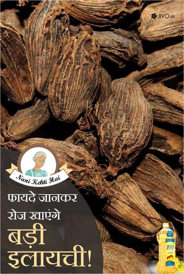 NaniKehtiHai फायदे जानकर रोज खाएंगे बड़ी इलायची भारतीय