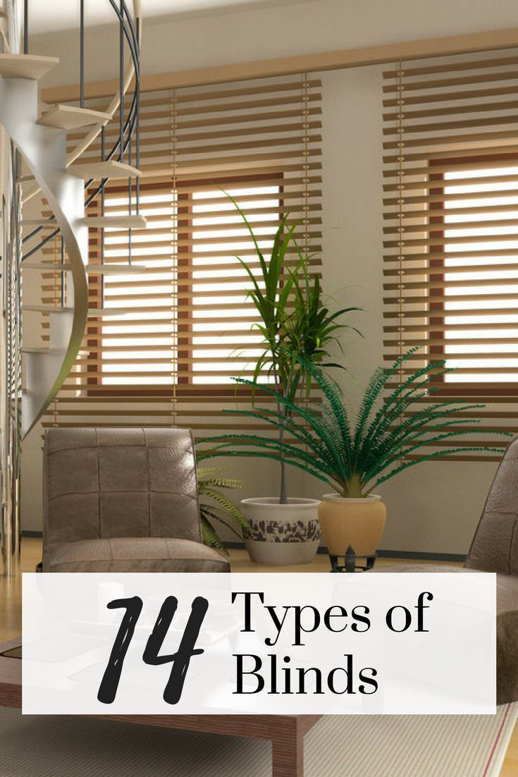 Window coverings types  windows in living room with wooden blinds blinds livingroom