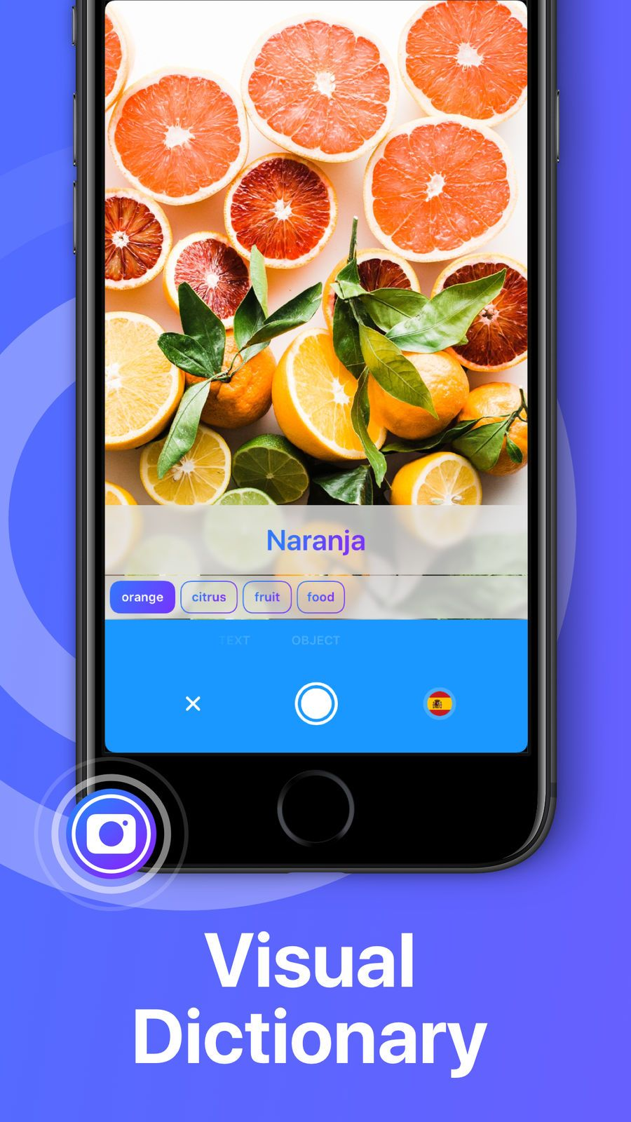 iTranslate Translator on the App Store Fruit recipes