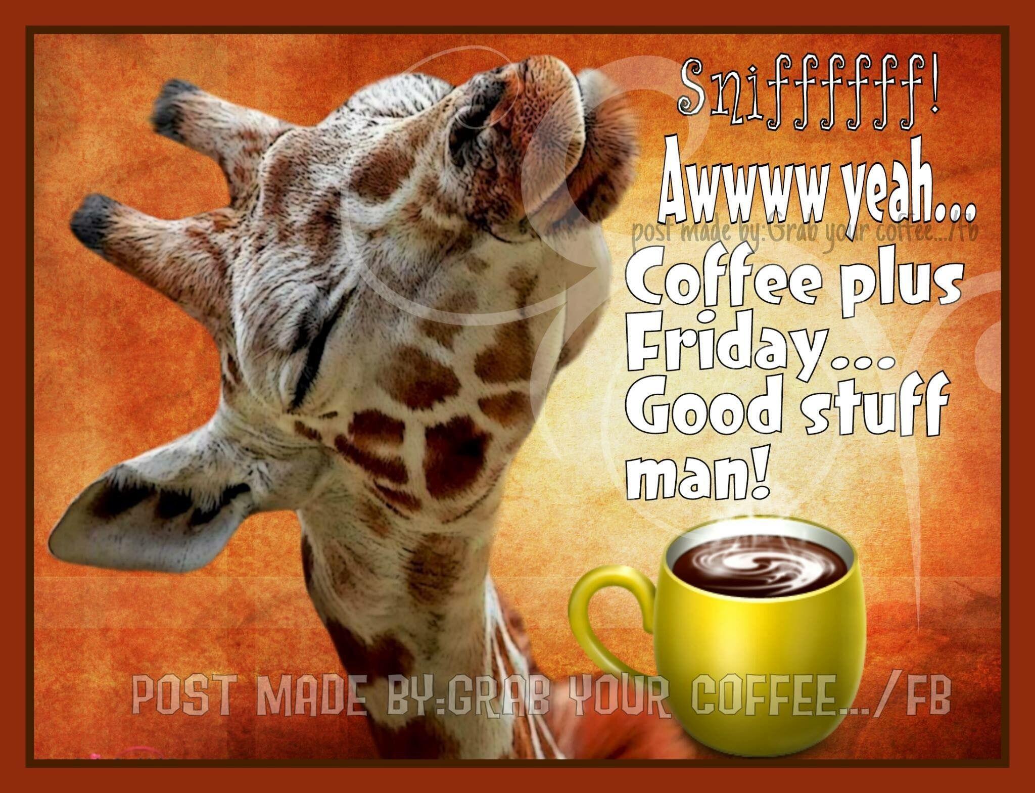Tgif Happy Friday Humour Friday Coffee Good Morning Friday