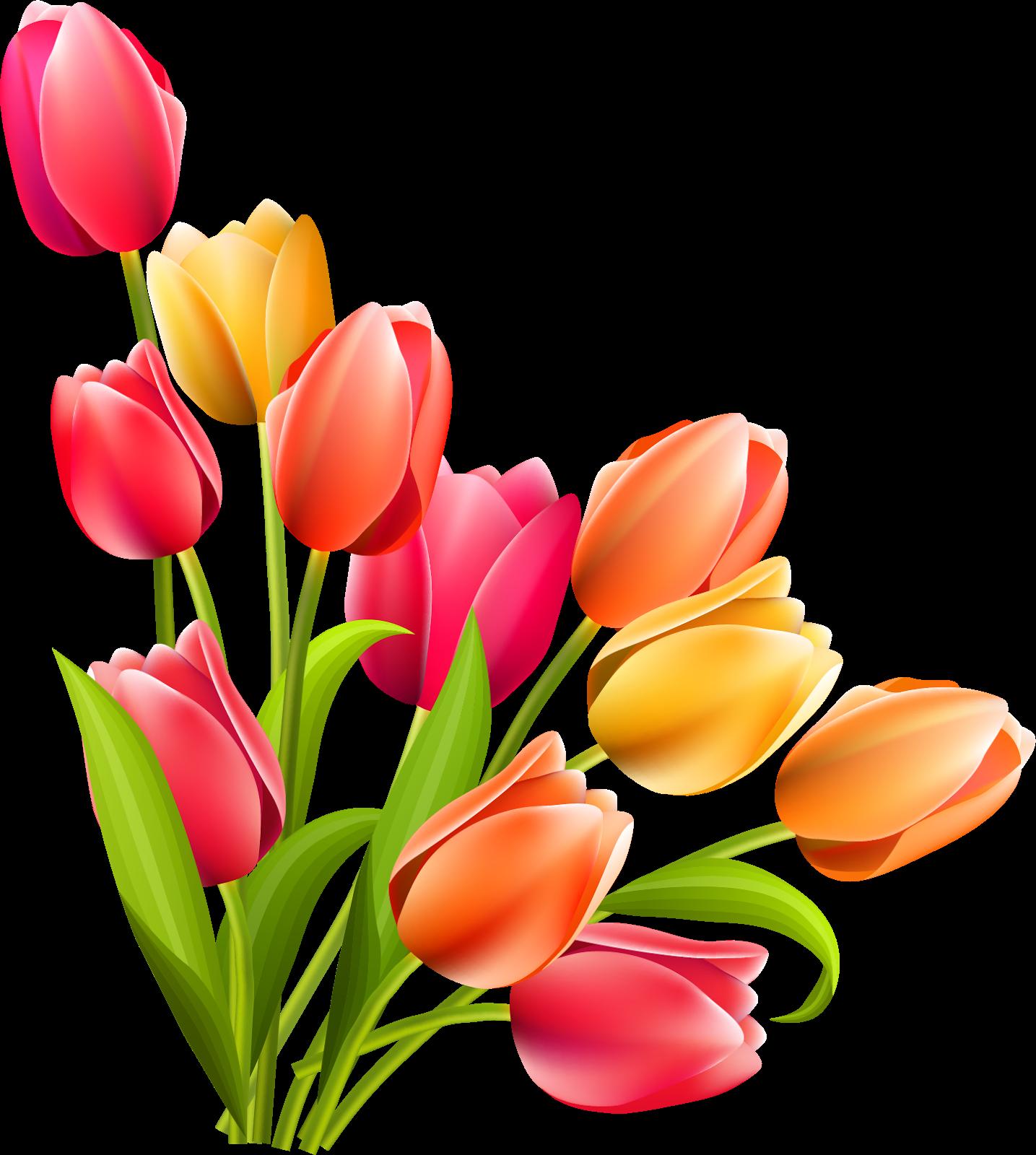 Pin Oleh World Design Di 6666 Poster Bunga Lukisan Bunga Bunga