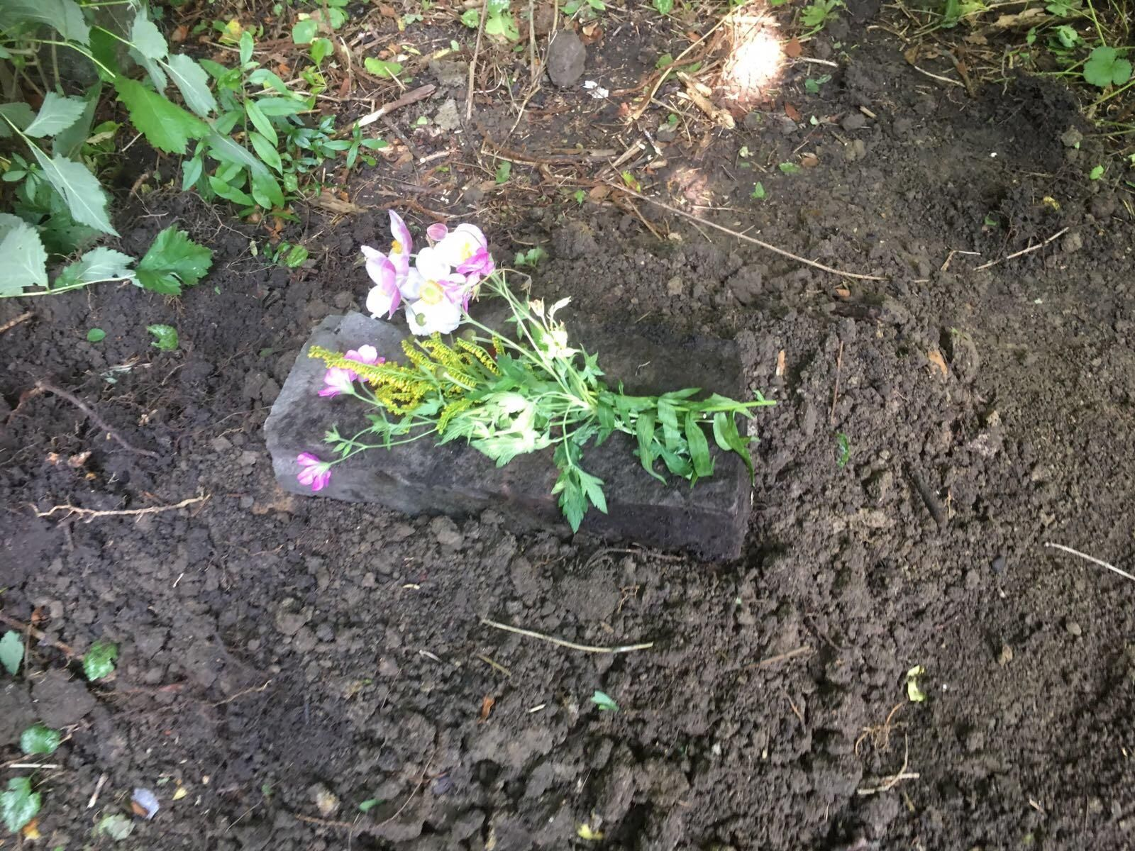 Her burial in the backyard next to our old dog. Bus 2002 ...