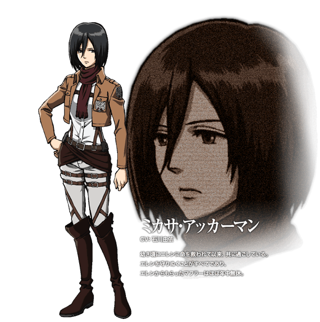 Attack On Titan Character Designs Attack on titan anime