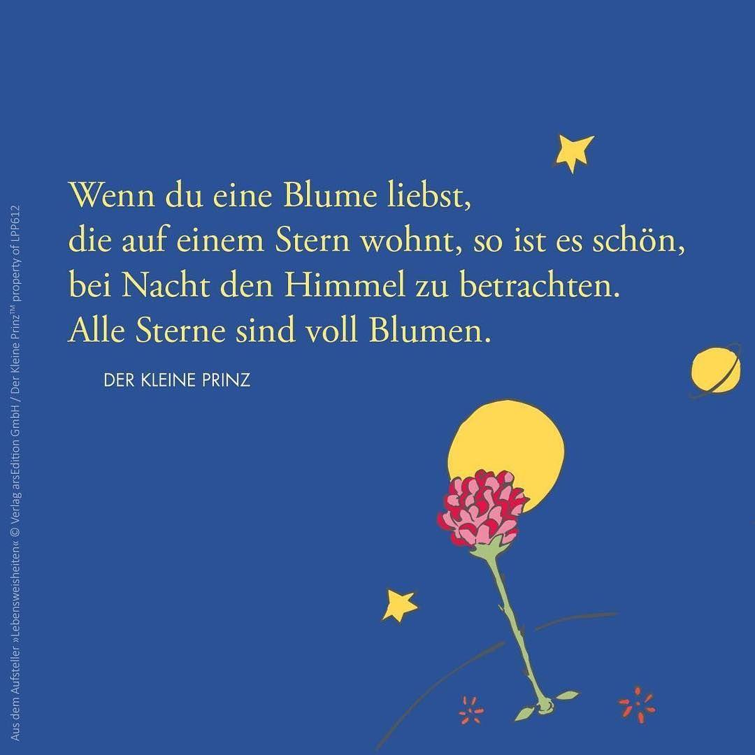Instagram Photo By Geschenkeschatz May 9 2016 At 1 25pm Utc Der Kleine Prinz Zitate Der Kleine Prinz Der Kleine Prinz Zitate Trauer