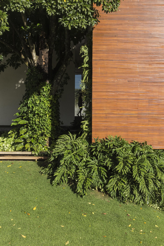 Gallery Of RMJ Residence / Felipe Bueno U0026 Alexandre Bueno   16. CladdingExterior  DesignArchitecture InteriorsTropical GardensLandscapingOlive ...