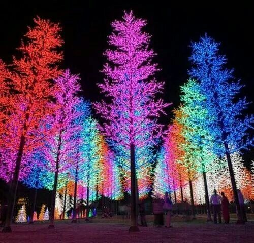 Neon Christmas Tree Lights