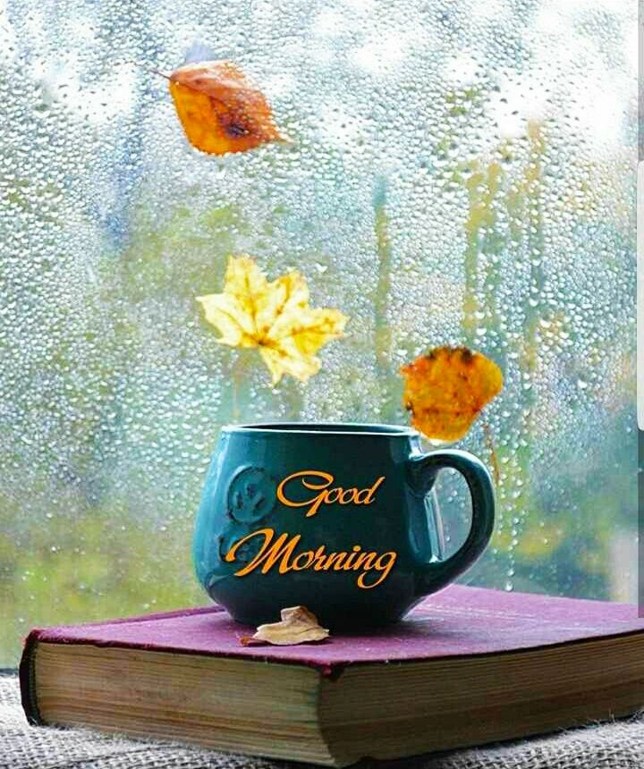 Good morning images for whatsapp free download hd