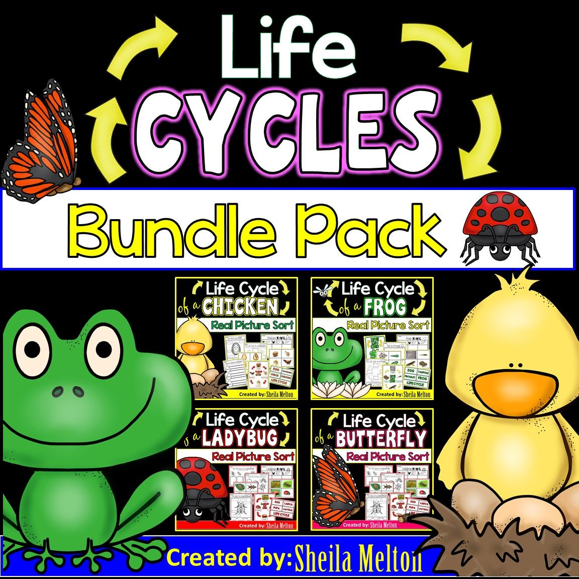 Life Cycles Bundle Pack Butterfly Frog Chicken Ladybug