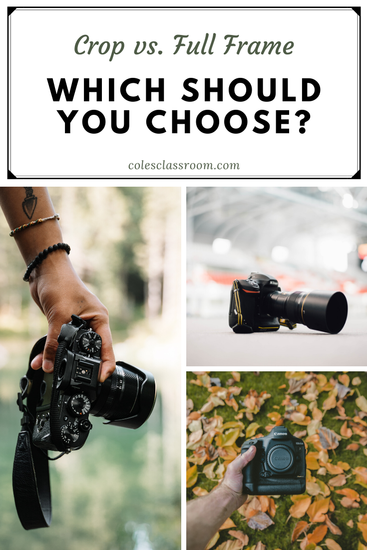 Crop Vs Full Frame Which Camera Do You Need In 2020 Photography Basics Full Frame Camera Teach Photography