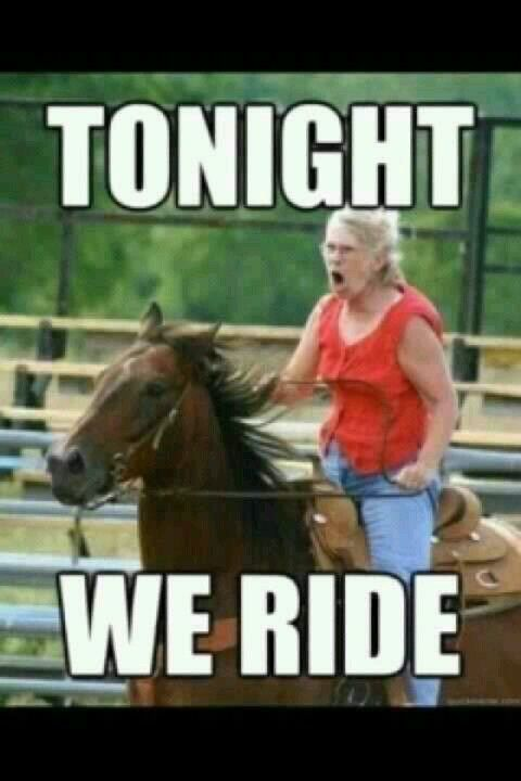 Pre Barrel Race Attitude My Fire My Wings Horse Meme Memes