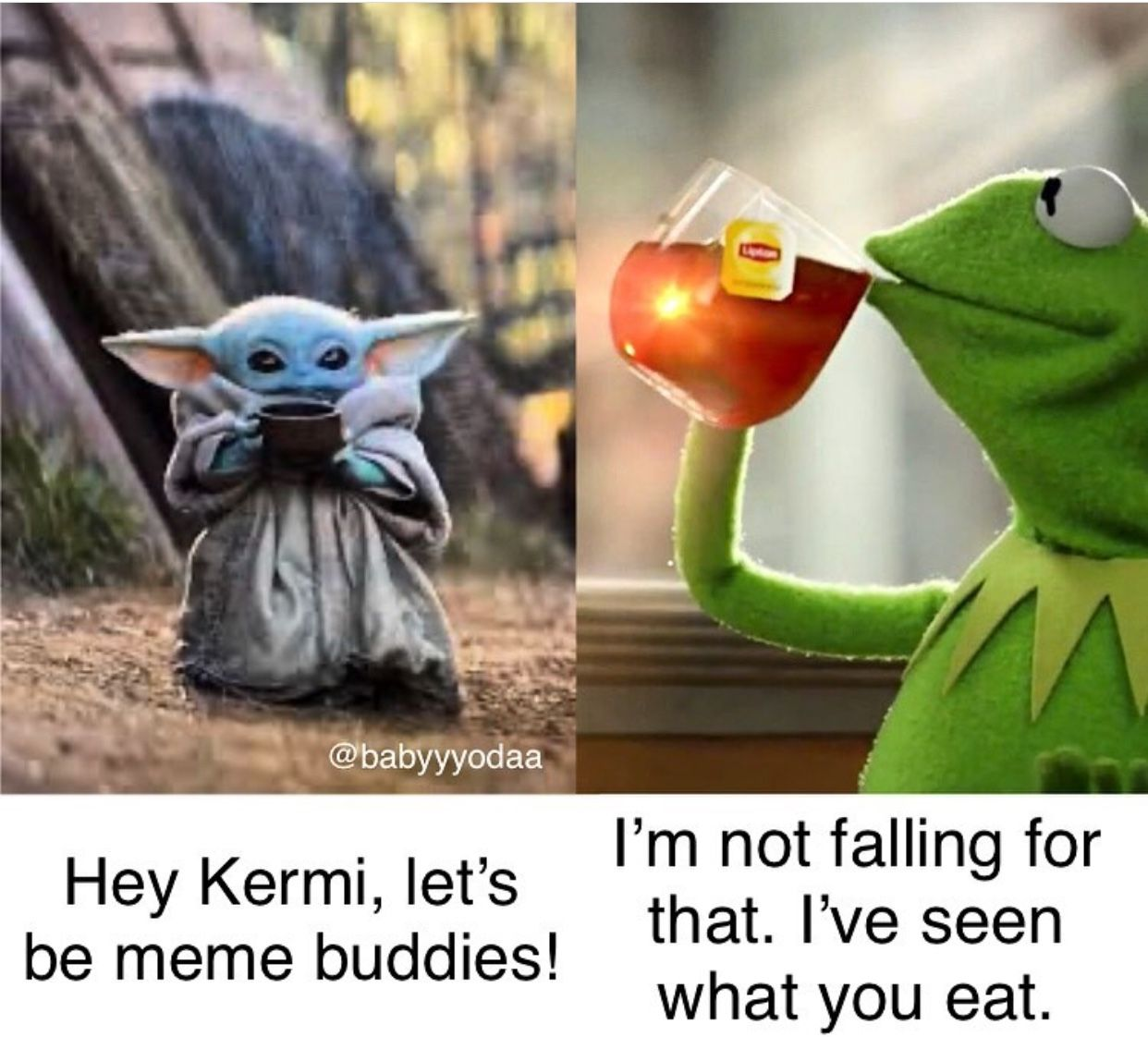 Pin By Holly Brightwell On Baby Yoda Yoda Funny Yoda Meme Star Wars Humor