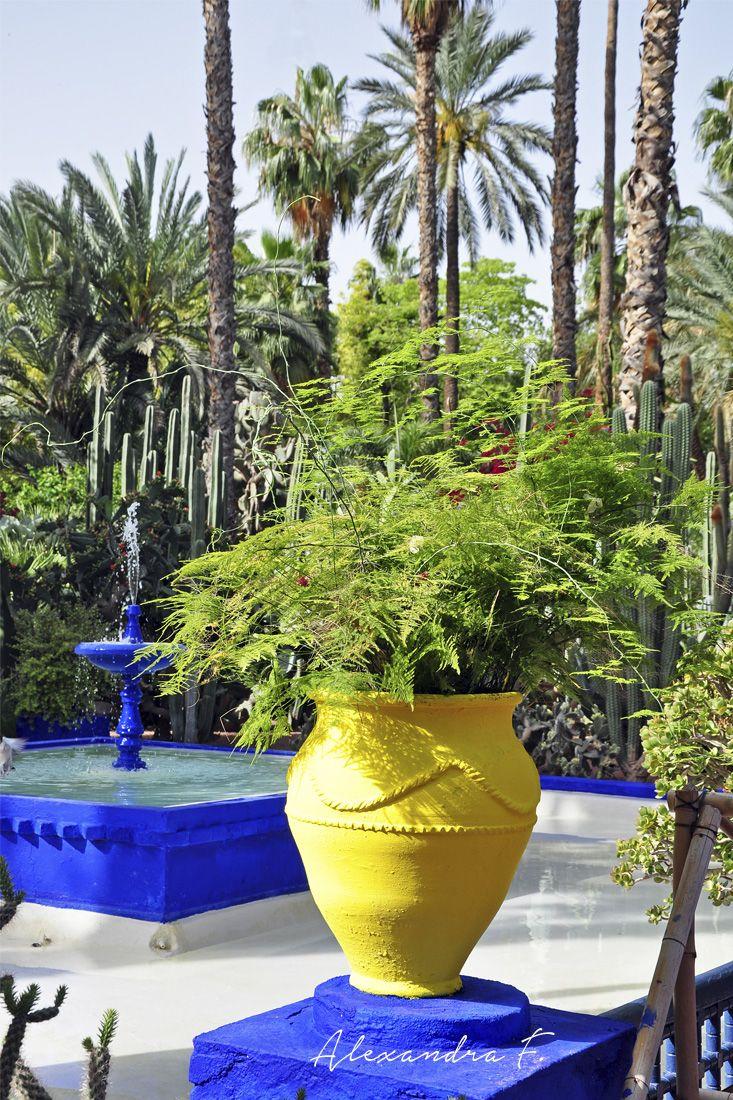Jardin Majorelle Marrakech Maroc Moroccan Touch Pinterest