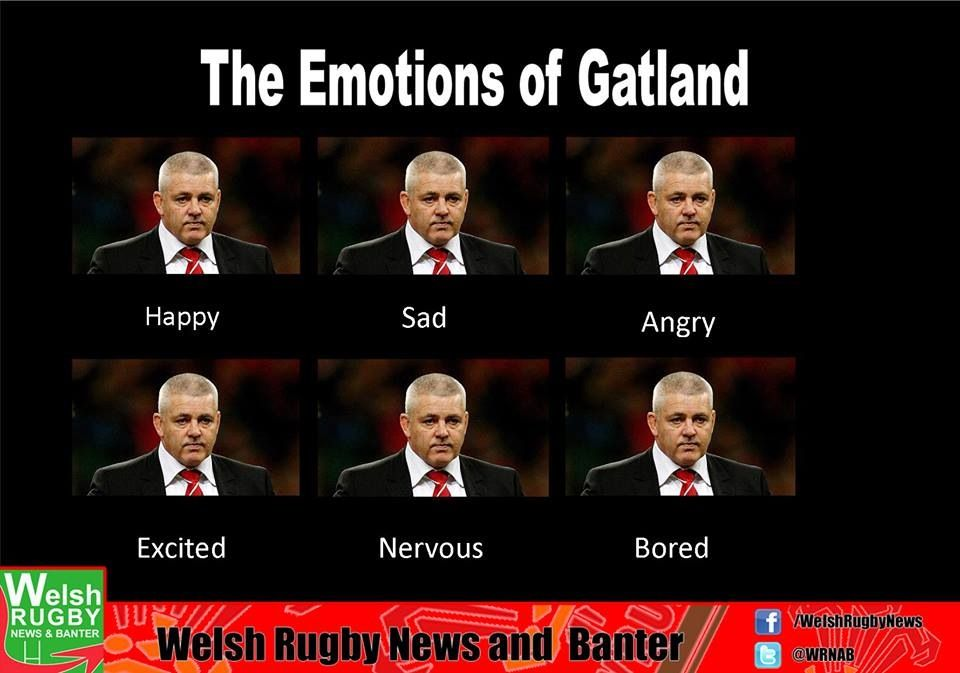 Welsh rugby banter.