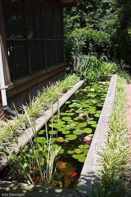 desain kolam ikan minimalis | taman air, kolam ikan, water