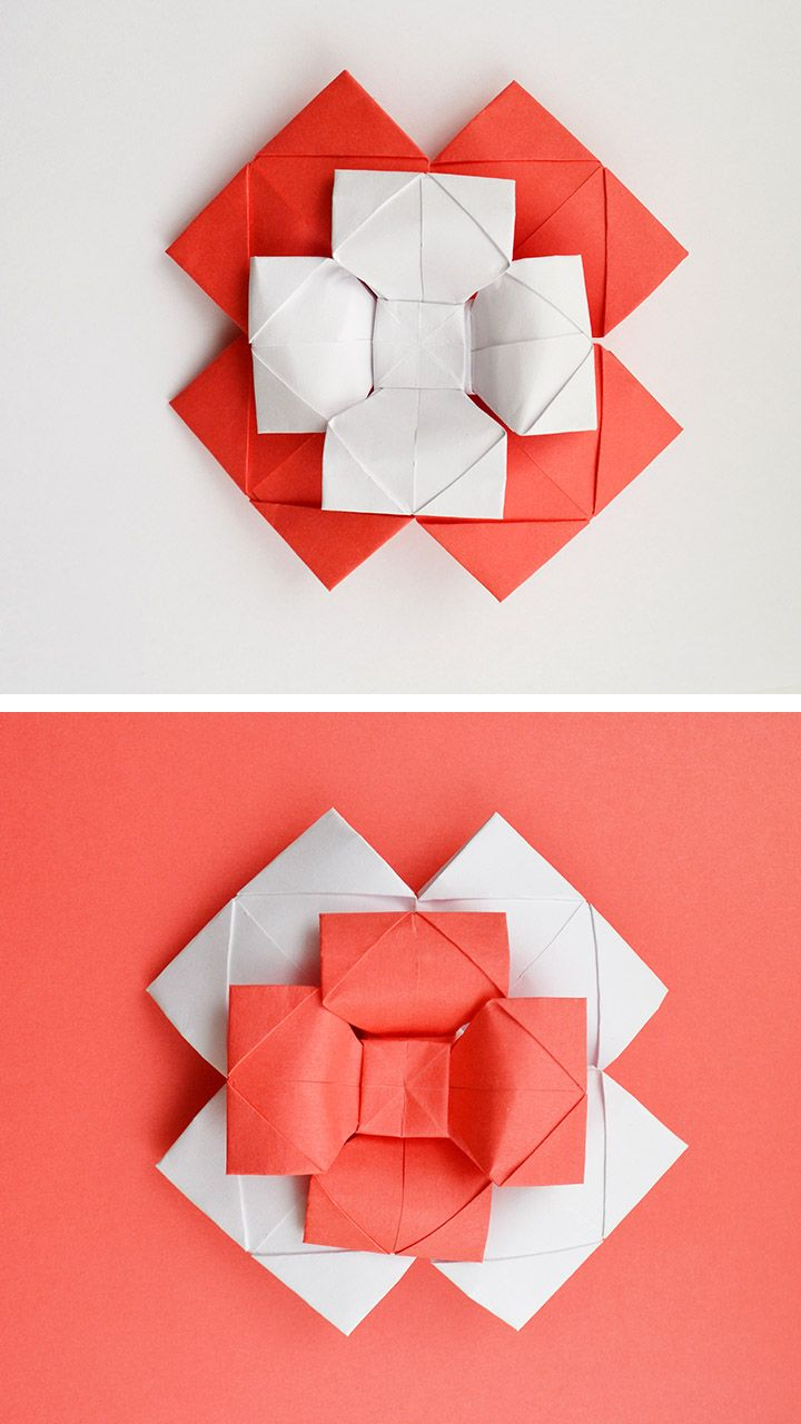 Paper Flower Bow Tie Decoration And Gift Origami Tutorial Diy