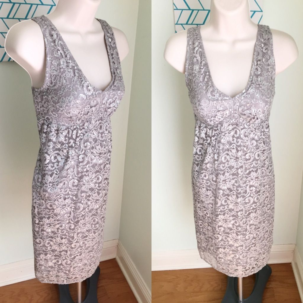 The Limited Gray Silver Lace Dress