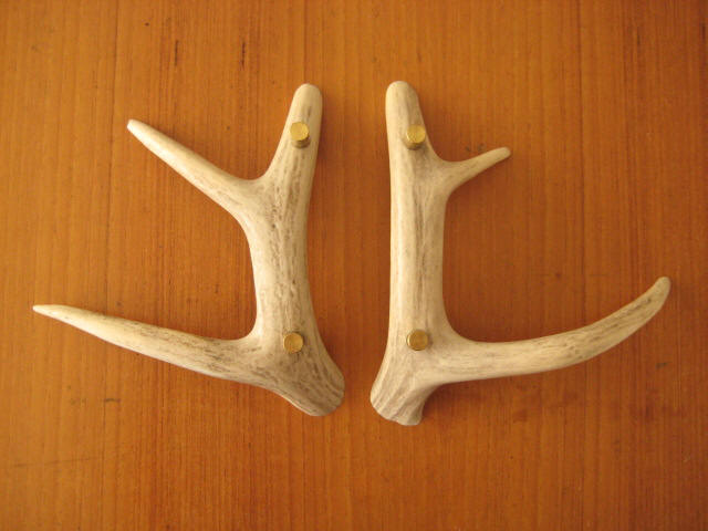 Deer Antler Drawer And Cupboard Handles Dream Cabin Pinterest