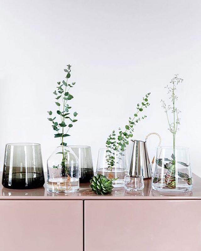 • laca linda! Vidros e verdinhos  •• um amor! #apto41inspira #apto41greenthings #greenthings #green #decor #decoracao #interior #interiordesign