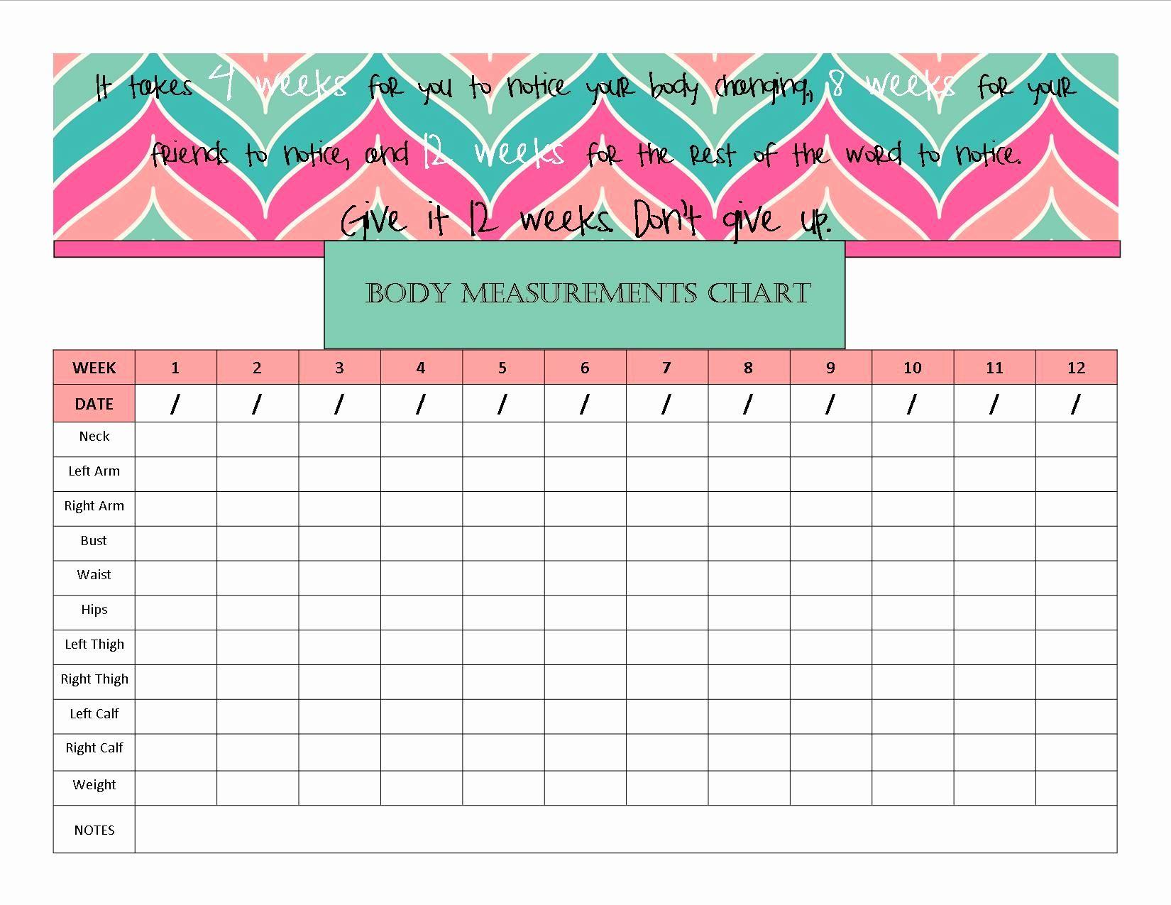 Strength Training Spreadsheet for Body Measurement Chart ...