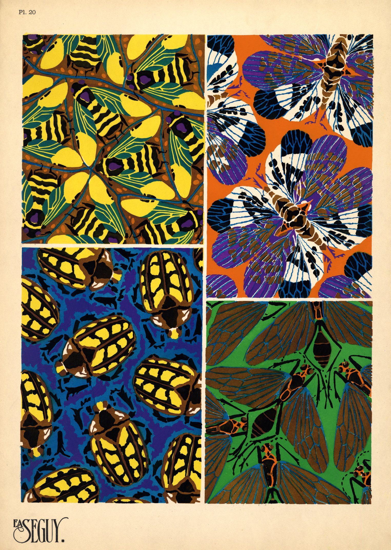 Http D Lib Ncsu Edu Collections Catalog Segins 023 Art Deco Pattern Insect Art Art