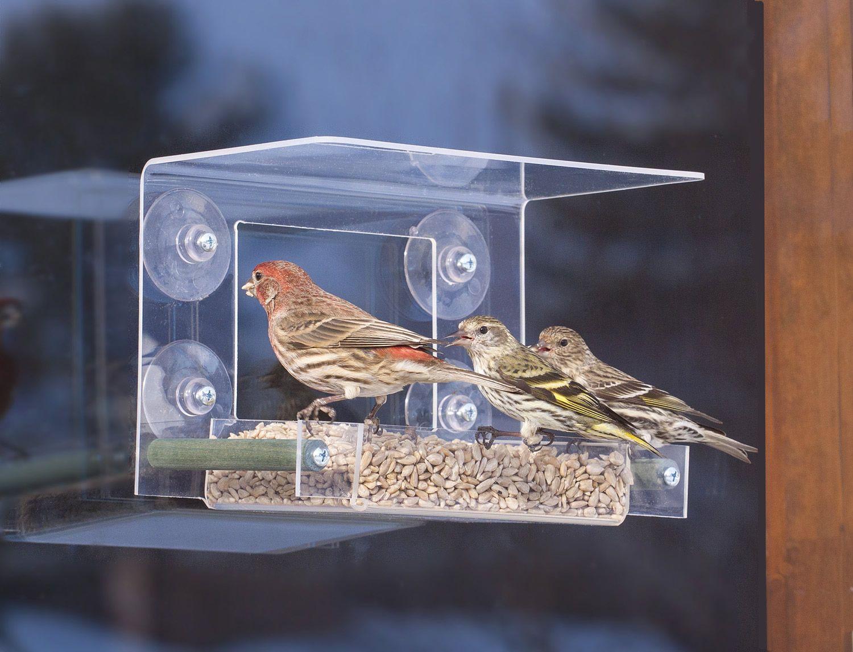 Birdsafe Classic Window Feeder Classic