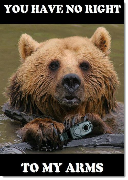 d6835857f56457f29766180b8f6b81a6 a well regulated militia being necessary to the security of a free,The Right To Bear Arms Meme