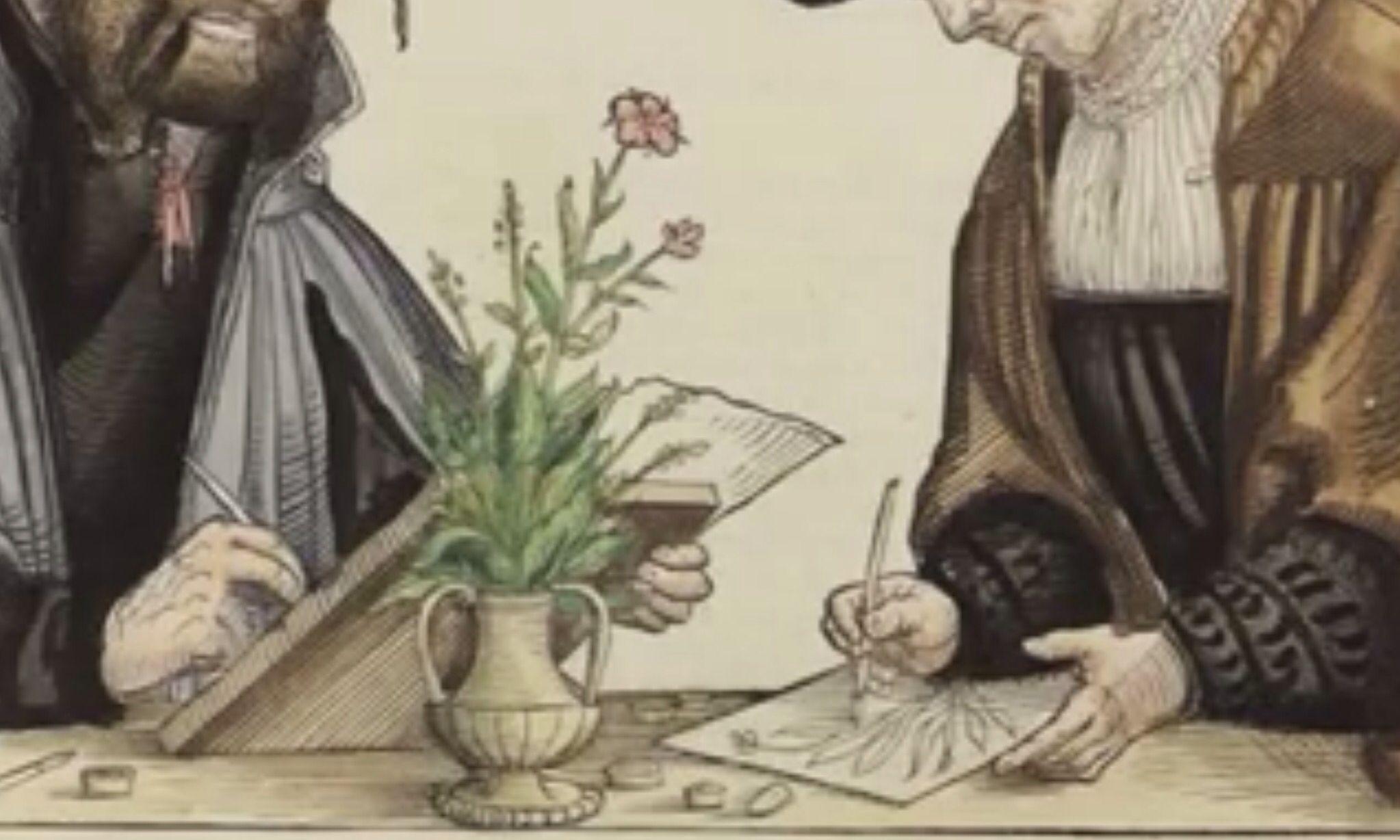 """NATURALEZAS  MUERTAS Detalle de ilustración bajo el título """"Painters of the Work"""", en el libro de Leonhart Fuchs, Comentarios notables en la historia de las plantas, 1542"""