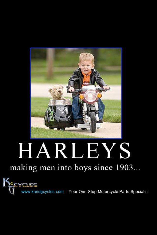 25+ Best Memes About Funny Harley Davidson Memes