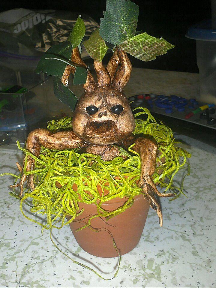 Baby Mandrake Plant By Zombeerazer Mandrake Tree Hugger Plants