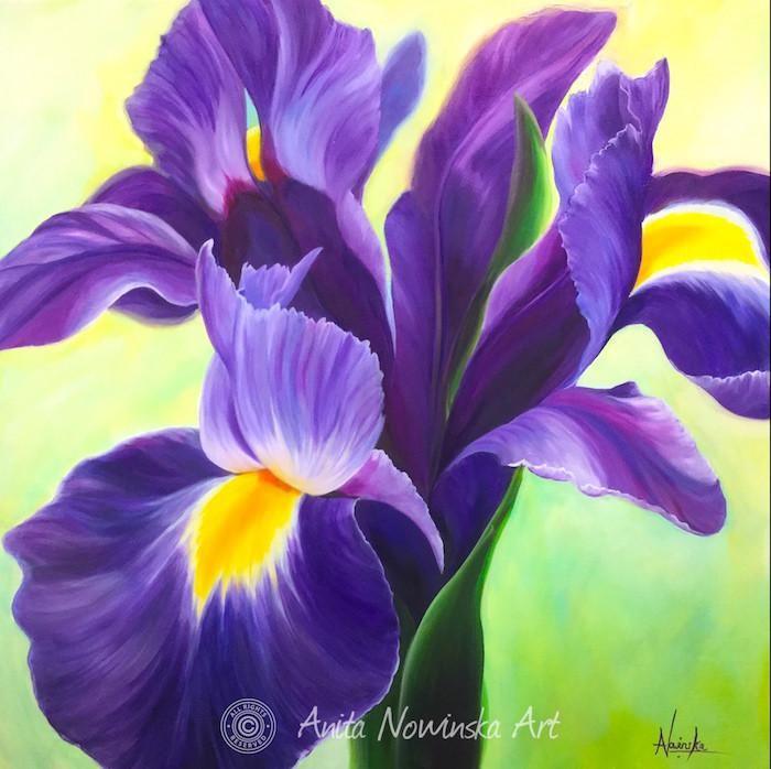 Creation Purple Iris Flower Painting Oil On Canvas Drawing Kvetiny Kresleni